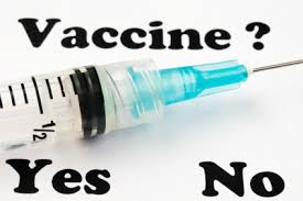 flu vaccine yes no