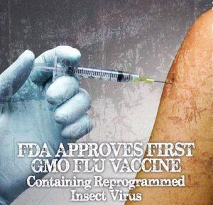gmo flu vaccine